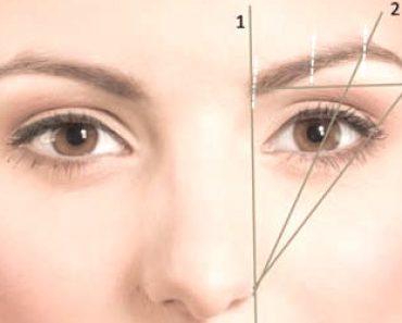 Forme du sourcil